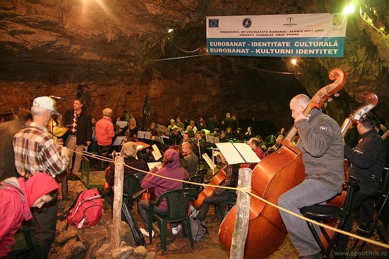 Orchestra se pregateste