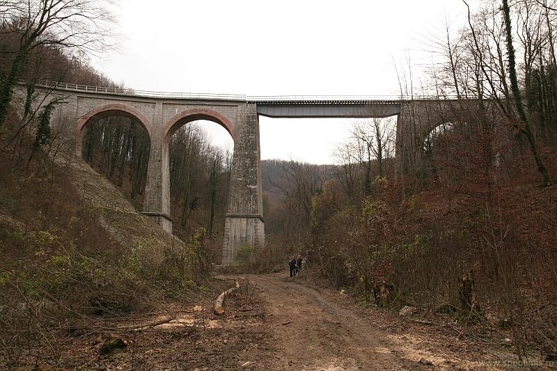 Viaductul jitin